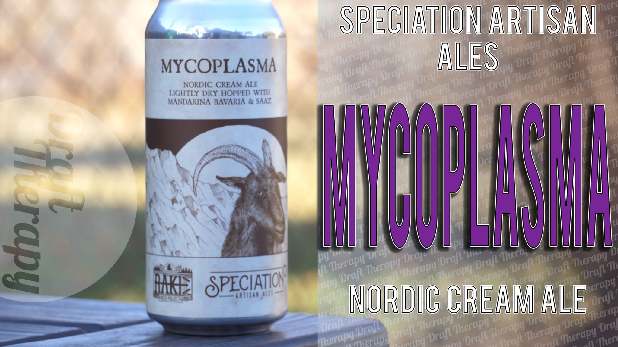 Speciation Artisan Ales – Mycoplasma – A Nordic Cream Ale